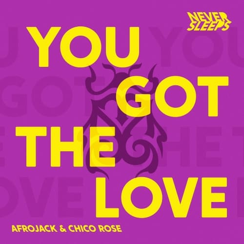 You Got The Love ARTWORK | UFO Network | Your #1 EDM Source